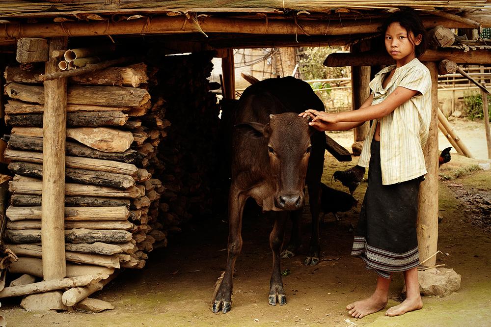 Laos-788