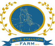 Blue Stallion Farm