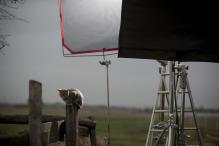 ppm film production