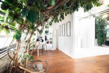 greenlight studios