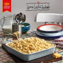 yehia el alaily
