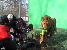 zoofilms