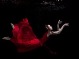 UNDERWATER PHOTOGRAPHY + MOTION