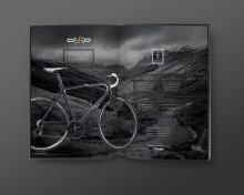 edge design ltd
