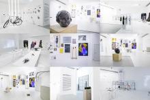 studio 229