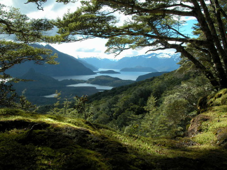 Location: Manapouri, Fiordland, South Island, New Zealand gallery