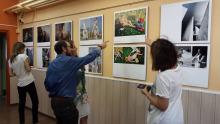 asociación de fotógrafos profesionales de españa