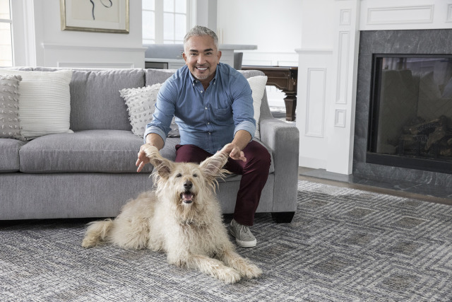 Celebrity: Cesar Millan gallery