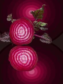 foodism360