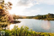seven islands film