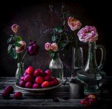 cath lowe photography