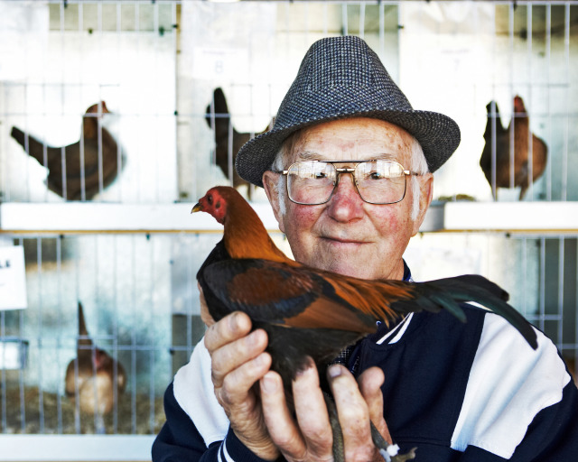 For the last 55 years, Don has been the poultry judge for the Royal Melbourne Show. gallery