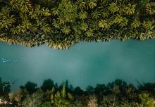 florentina olareanu