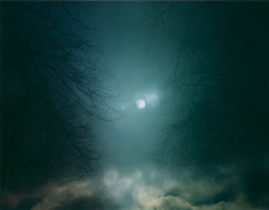 Photo: Nicholas Hughes gallery