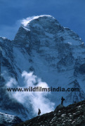 Wilderness Films India Ltd.
