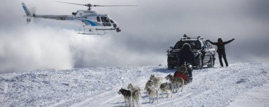 Heli Sled Dogs gallery