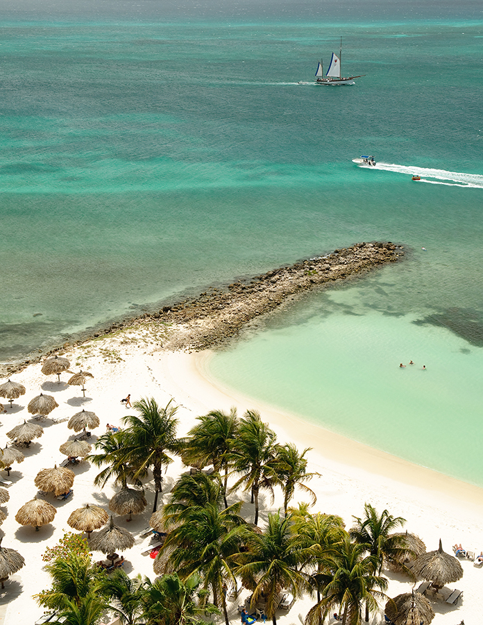 Eagle Beach Aruba  city photo : Eagle Beach, Aruba. Beaches, Travel, Worldly Places, Eagles, Sea ...