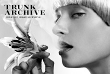trunk archive