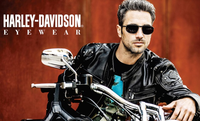 Client: Harley Davidson for Viva International Group gallery