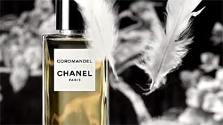 Director: Thomas De Monaco for Chanel gallery
