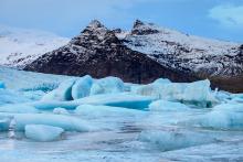 arcticon