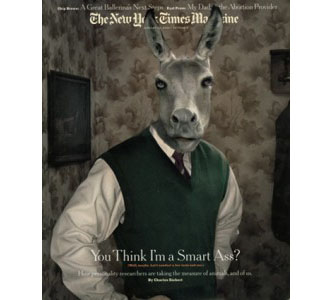 1magic photo erwin olaf client new york times magazine b
