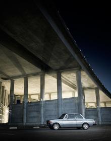 lupine hammack photography